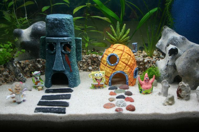 Maison bob l 39 ponge pour aquarium for Star home designs products