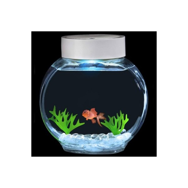 Aquarium magique poisson rouge lectronique commentseruiner for Ou placer aquarium poisson rouge