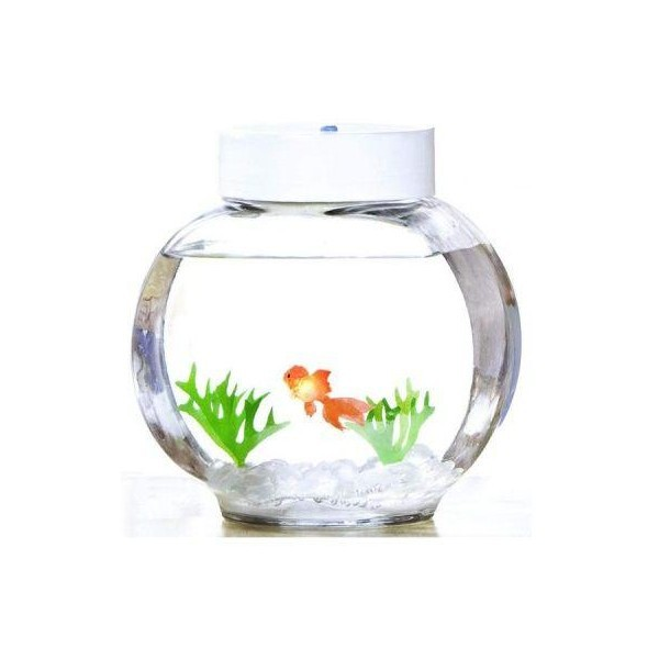 Aquarium magique poisson rouge lectronique commentseruiner for Deco aquarium poisson rouge