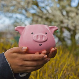 Pig Mug - Le Mug Cochon