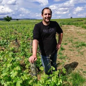 Adopte une vigne de Pommard - Domaine Cluzeaud