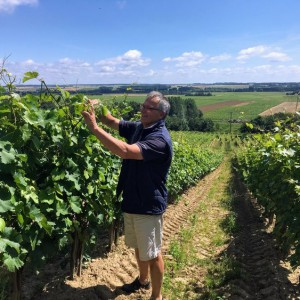 Adopte une vigne de Chinon - Domaine Jourdan Pichard