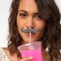 Pailles Moustaches (x6)