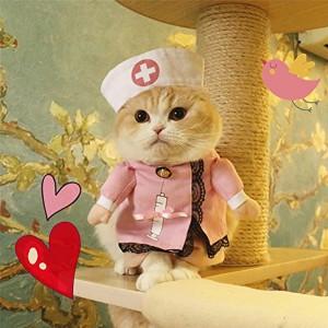 Déguisement pour chat - Infirmière Cathy