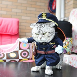 Le déguisement policier Chat (ou petit chien)