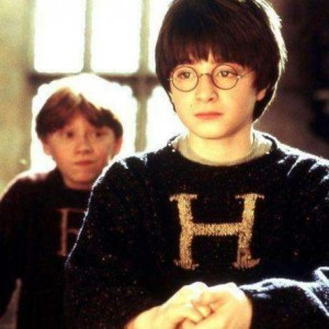 Pull over Harry Potter Gryffindor