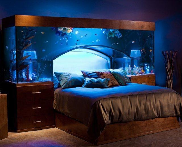 Lit Aquarium
