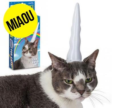 corne de licorne pour chat lol cat gonflable unicorn